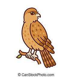 Cartoon Chimango bird - Cartoon drawing of Tiuque (Chimango...