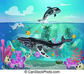 Cartoon Colorful Sea Life Background