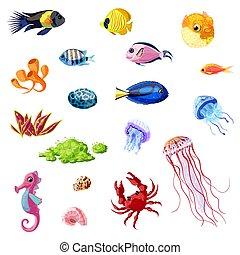 Cartoon Colorful Sea Life Set