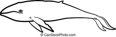 Cartoon contour whale
