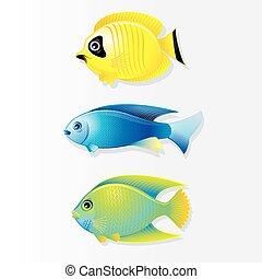 Cartoon Coral reef Fish. Vector Image - Cartoon Vector...