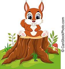 Cartoon cute baby squirrel on tree stump