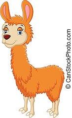 Cartoon cute llama - Vector illustration of Cartoon cute...