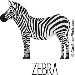 Cartoon cute zebra vector flat illustration