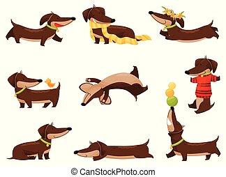 Cartoon dachshunds on white background. Vector illustration.