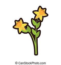 cartoon daffodil flower spring floral