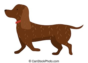 Cartoon dog vector illustration of cute purebred dachshund isolated on white background side view