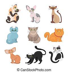 Cartoon domestic cats vector illustration