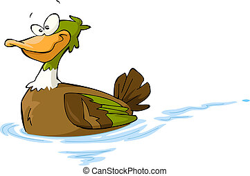 Cartoon duck - Floating duck on a white background vector...