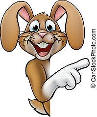 Cartoon Easter Bunny Rabbit Pointing - A cartoon rabbit or...