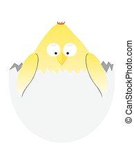 cartoon easter chicken in egg . vector funny animal illustration