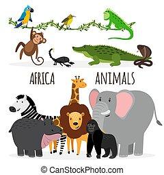 Cartoon exotic Africa animals
