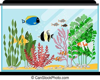 Cartoon fishes in aquarium. Saltwater or freshwater fish tank vector illustration. Water animal goldfish, sea tropical color fish