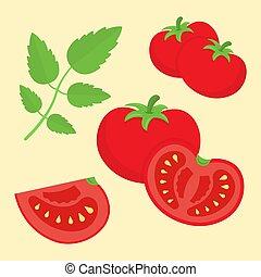Cartoon flat style tomatoes vector illustration