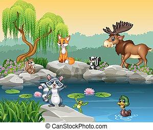 Cartoon funny animal collection
