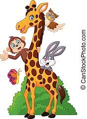 Cartoon funny animal isolated