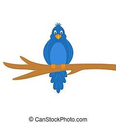 Cartoon funny bird