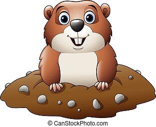 Cartoon funny groundhog - Vector illustration of Cartoon...
