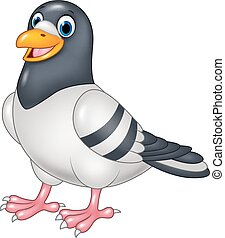Cartoon funny pigeon isolated - Vector illustration of...
