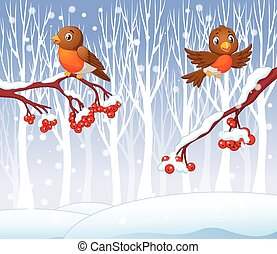 Cartoon funny robin bird - Vector illustration of Cartoon...