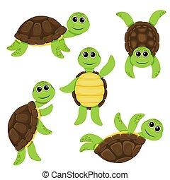 Cartoon funny turtle characters set