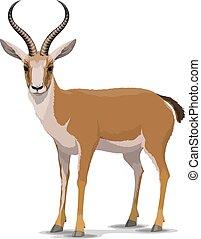Cartoon goitered gazelle animal, vector - Goitered gazelle...