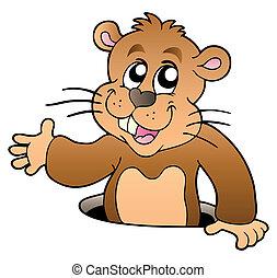 Cartoon groundhog lurking from hole - vector illustration.