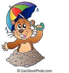 Cartoon groundhog with umbrella - vector illustration.