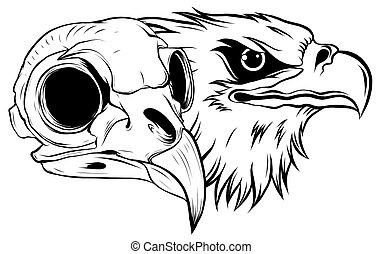 cartoon illustration of a bird skull vector