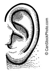 Cartoon image of human ear