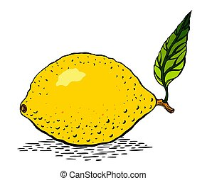 Cartoon image of lemon