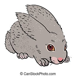 Cartoon image of rabbit