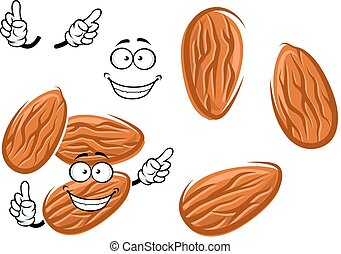 Cartoon isolated almond seed character