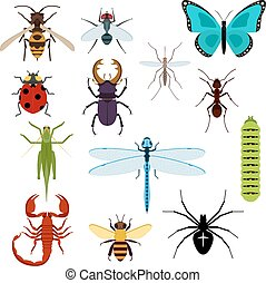 Cartoon isolated colorful insects set