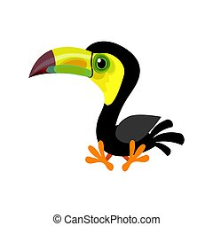 Cartoon keel-billed toucan (Ramphastos sulfuratus) also known as sulfur-breasted toucan