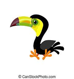Cartoon keel-billed toucan (Ramphastos sulfuratus) also ...