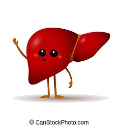 Cartoon liver vector illustration