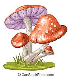 Cartoon mushroom on white background