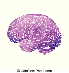 Cartoon neon illustration of a human brain with highlights and shadows.