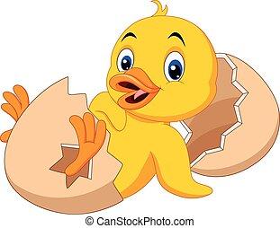 Cartoon new born duckling - Vector illustration of Cartoon...