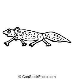 cartoon newt
