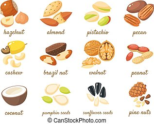 Cartoon nuts set - hazelnut, almond, pistachio, pecan, ...
