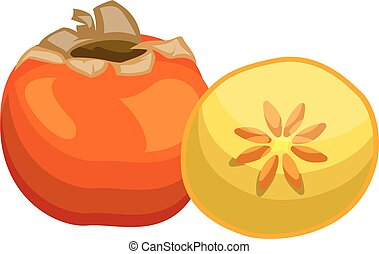 Cartoon of an orange persimmon fruit half a yellow persimmon with orange seed vector illustration on white background.