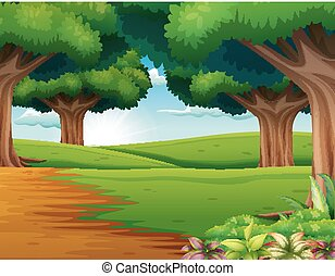 Cartoon of the forest scene with many trees