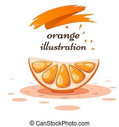 Cartoon orange on the white background.