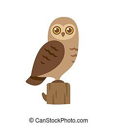 Cartoon owl illustration