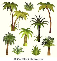 Cartoon palm tree. Jungle palm trees with green leaves, exotic hawaii forest, miami greenery coconut beach palms isolated vector set