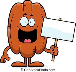 Cartoon Pecan Sign - A cartoon illustration of a pecan...