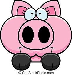 Cartoon Pig Peeking - A cartoon illustration of a little pig...