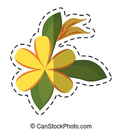 cartoon plumeria flower decoration icon